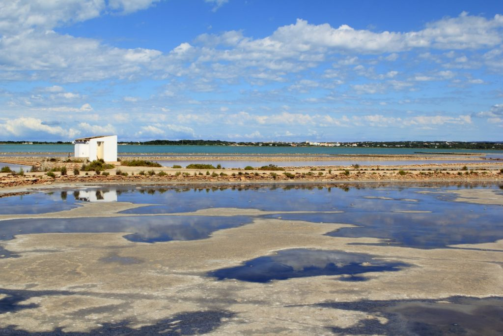 Ibiza - Ses Salines-zoutmeren