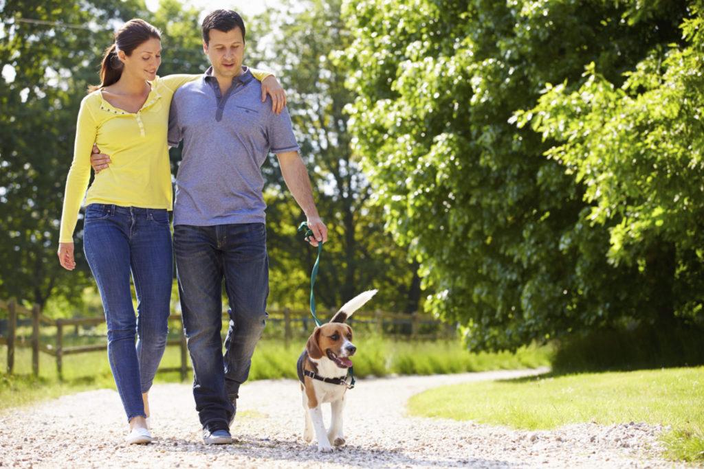 De voordelen van wandelen voor je gezondheid!