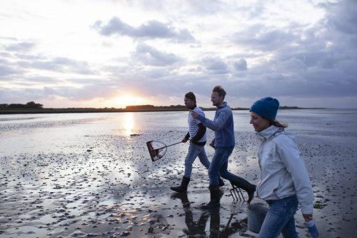 Najaarstripje dichtbij: Friesland en de Waddeneilanden