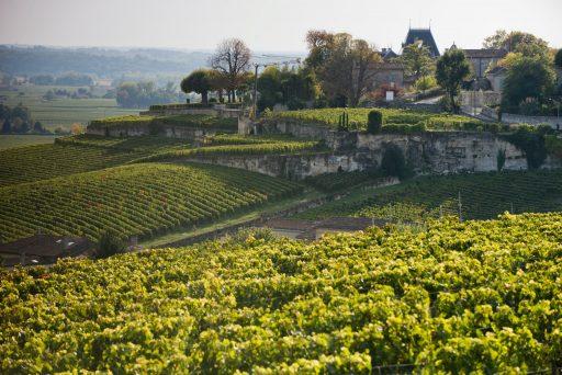 Een eigen wijndomein(tje) opstarten in Bordeaux? Dit zijn de prijzen per streek