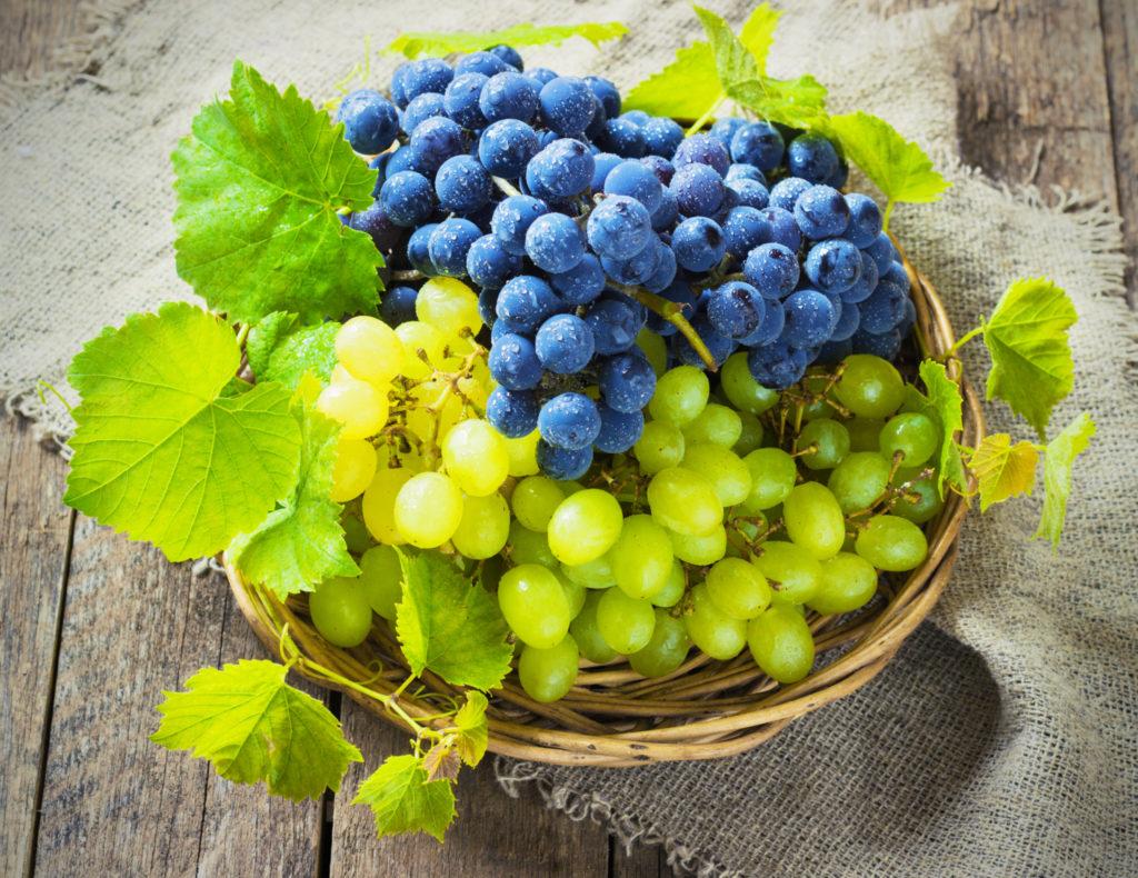 Zijn druiven echt gezond?